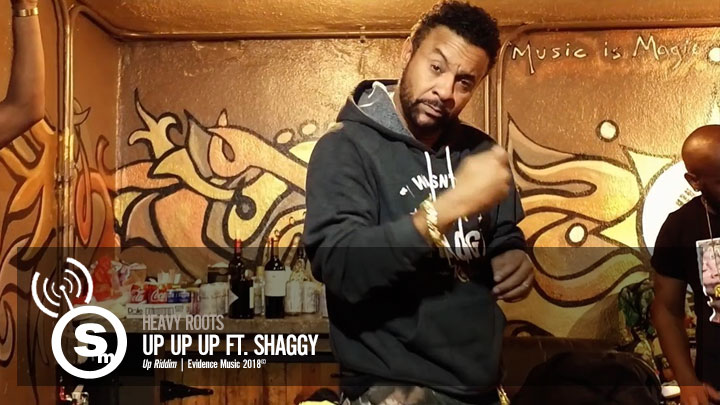 Shaggy - Up Up Up