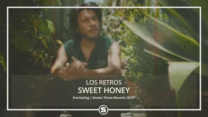 Los Retros - Sweet Honey