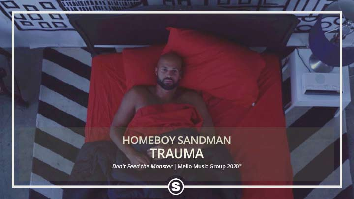 Homeboy Sandman - Trauma